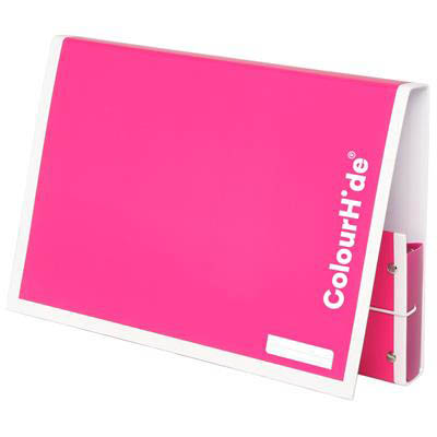Image for COLOURHIDE MY HANDY DOCUMENT BOX A4 PINK from Mackay Business Machines (MBM)
