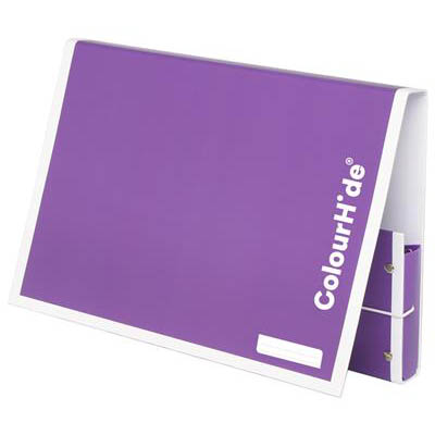 Image for COLOURHIDE MY HANDY DOCUMENT BOX A4 PURPLE from Office National Perth CBD