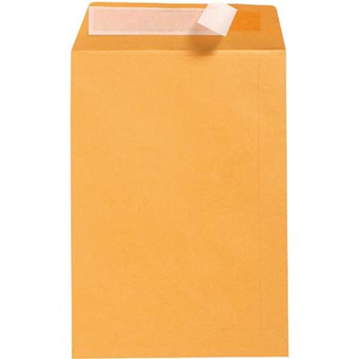 Image for CUMBERLAND ENVELOPES POCKET PLAINFACE STRIP SEAL 100GSM 380 X 255MM GOLD BOX 250 from Paul John Office National