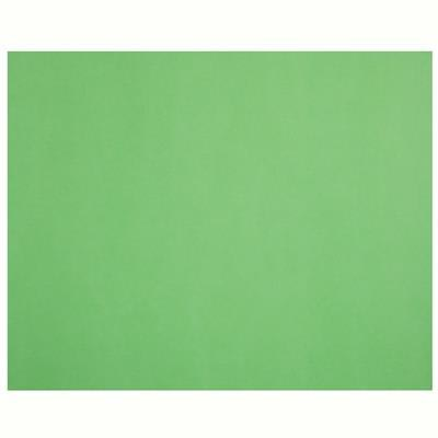 Image for QUILL XL MULTIBOARD 210GSM 510 X 635MM LIME PACK 20 from Express Office National